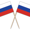 Russia Toothpick Flags