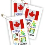 Canada Thinking Day Toothpick Flag SWAPs
