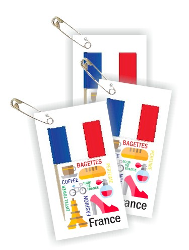 France Thinking Day Toothpick Flag SWAPs