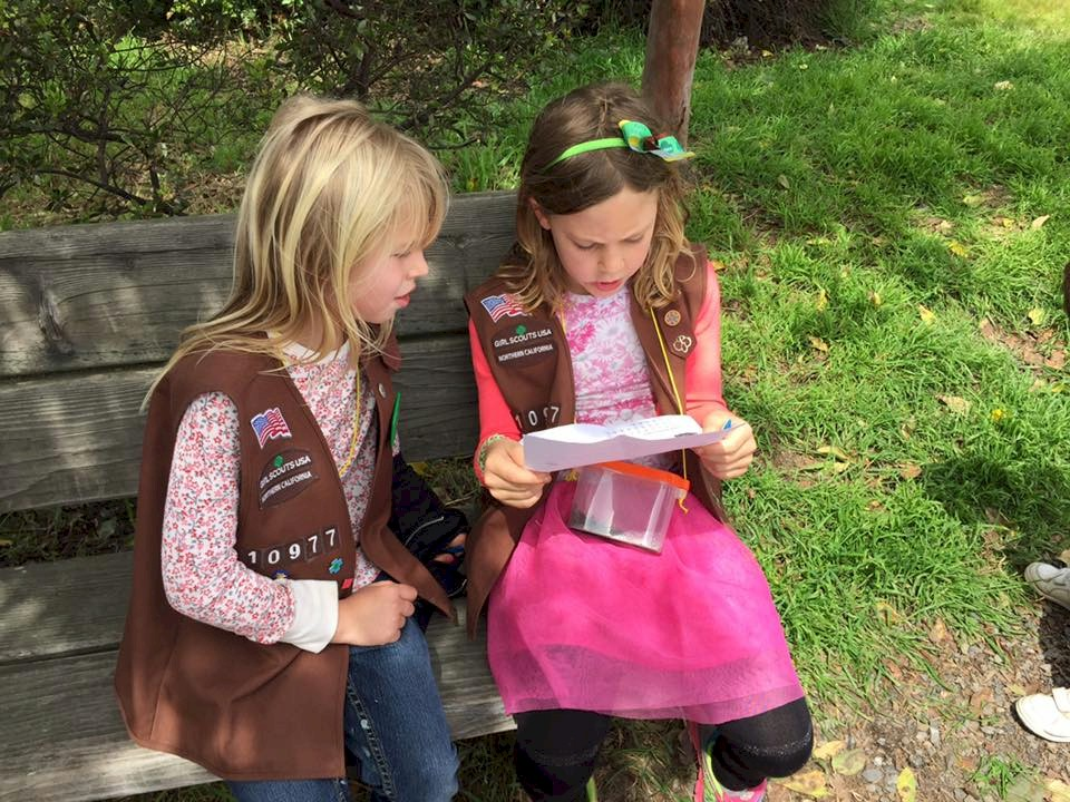 Brownie Girl Scouts letterboxing.