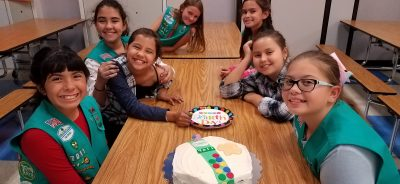 Multi-Level Girl Scout Birthday Party
