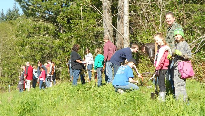 Cadette Girl Scouts Planting Trees