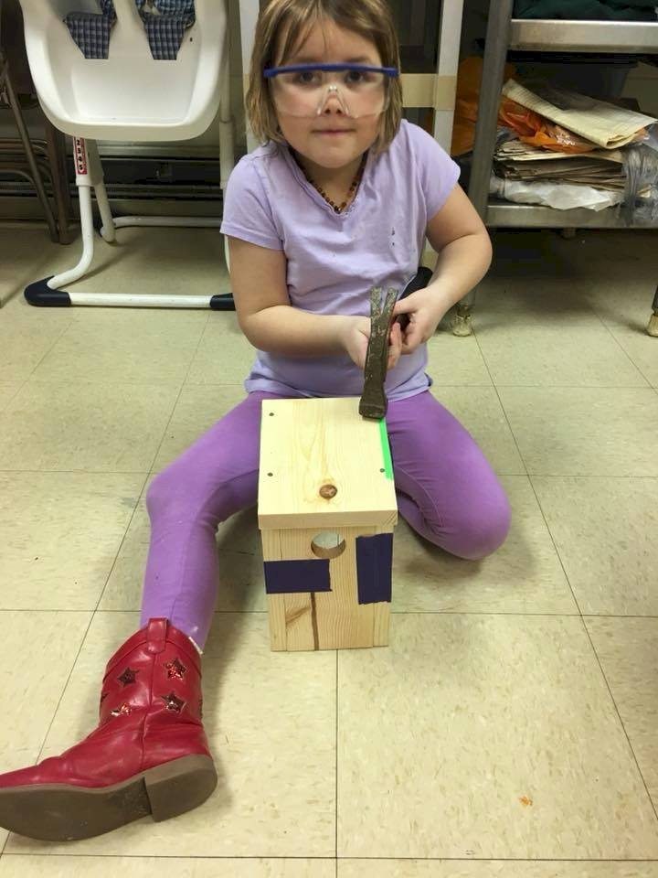 Daisy Girl Scout building a birdhouse.