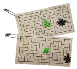 Ant Maze Science SWAP Kit