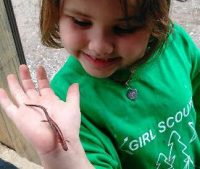 A Daisy* from Troop 52905 of Pennsylvania being courageous and strong will learning about wildlife on a camping trip.