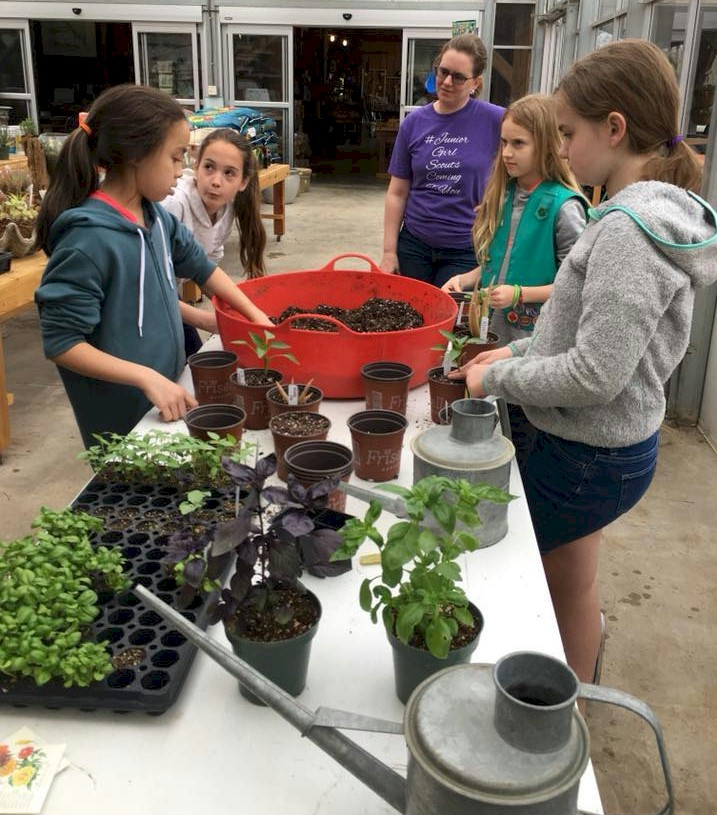 Junior Girl Scout planting at a nursery.
