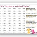 Animal Shelter Volunteer Word Search