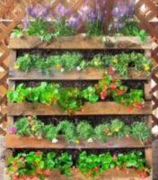 Pallet Garden for Honey Bees