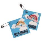 Girl Scout Bridging Swaps