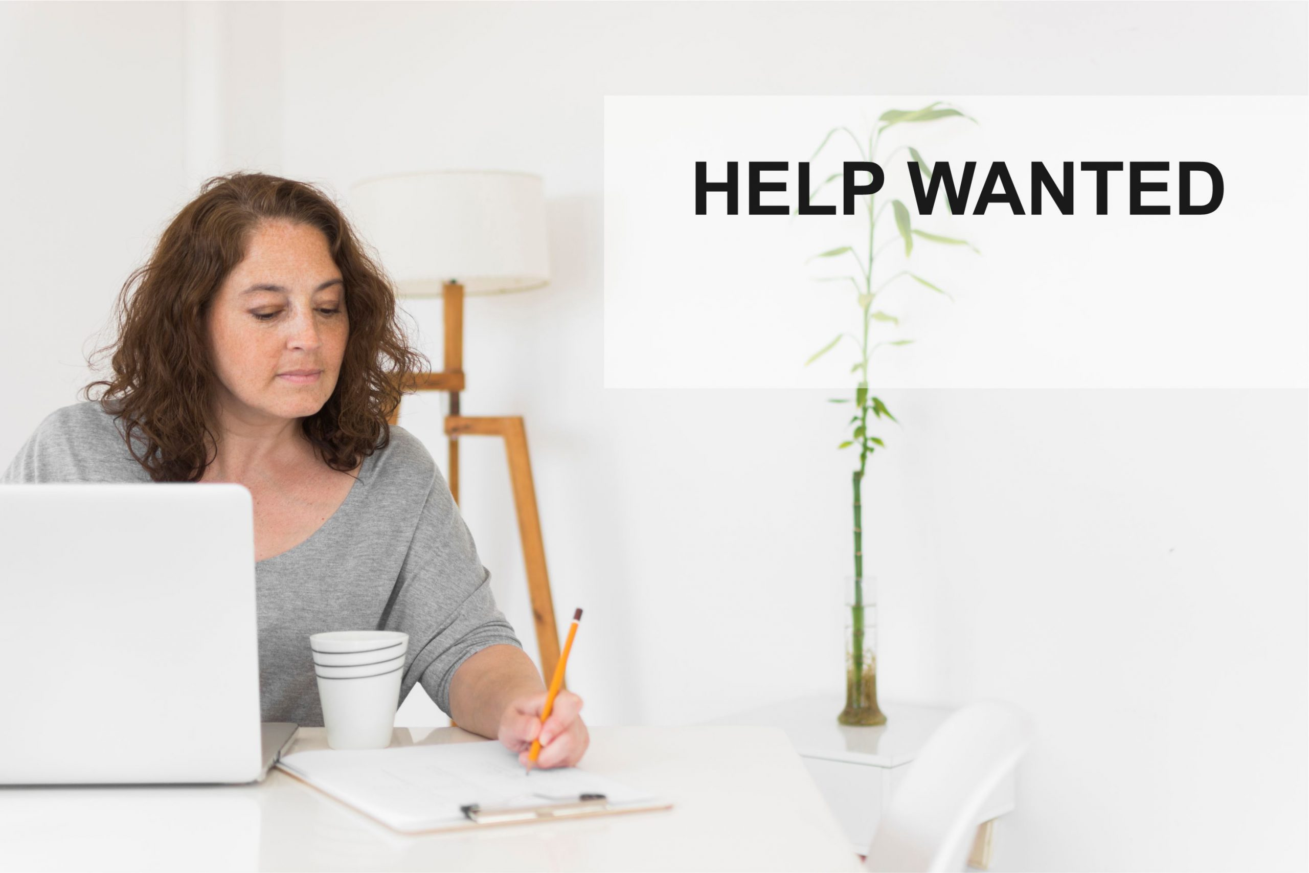 Help Wanted MakingFriends