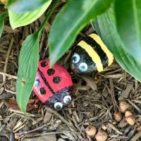 nature crafts girl scout painted rocks