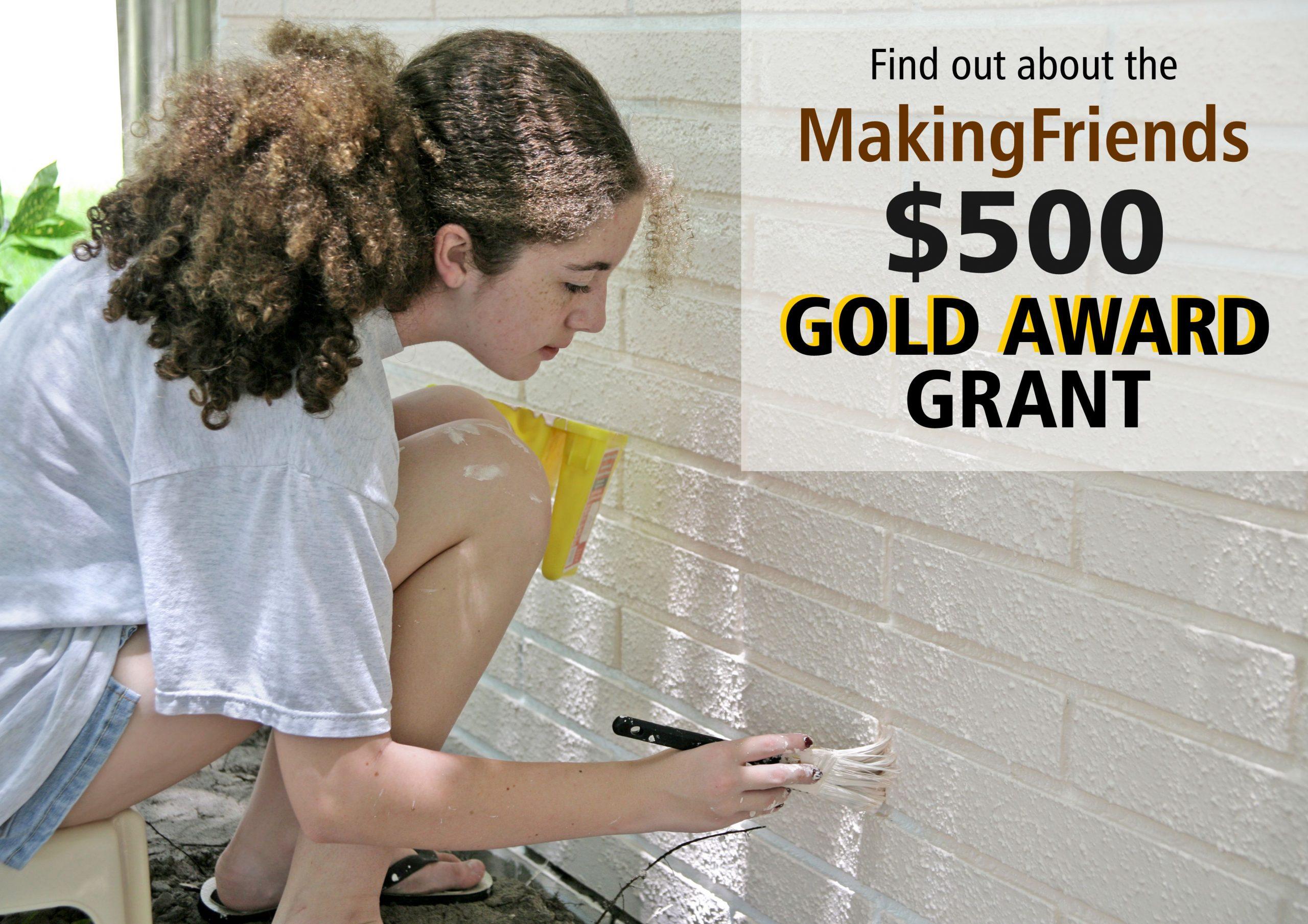 MakingFriends Gold Award Grant