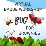 Girl Scout Virtual Bug Workshop for Brownies